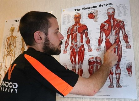 Educating in sports therapy, physiotherapy and sports massage
